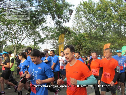 Financial Run Experience 2016_000006
