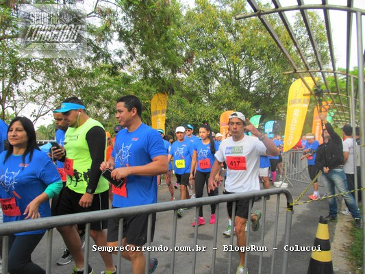Financial Run Experience 2016_000008
